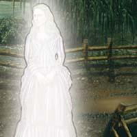 Image miniature Victorian Mysteries: La Dame